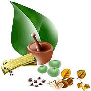 eastrovedica, hindu astrology software consultancy and research,ayurveda, kerala ayurveda